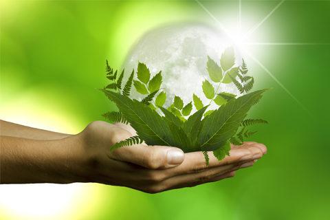 Šta je održivi razvoj?