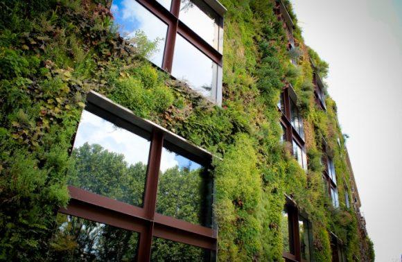 Malo firmi u BiH spremnih da rade zelenu fasadu
